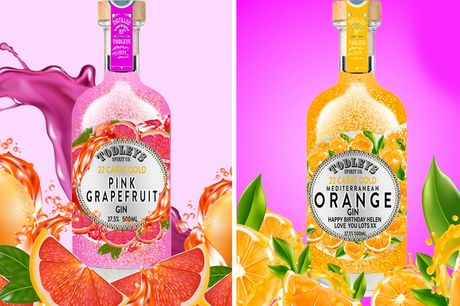 £24.99 (from Bottle Bling) for a 50cl bottle of Todley Fruity Gin - choose from six flavours!