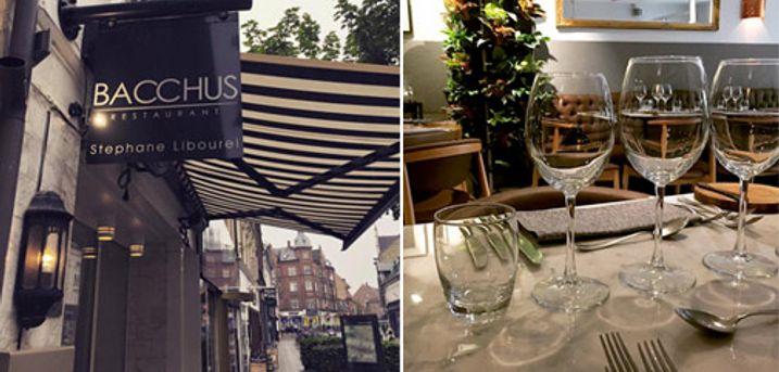 Skøn frokostdeal hos Restaurant Bacchus - Franske fristelser for 1 person - Glæd dig til Gedesalat med gratineret honning inkl. hjemmebagt brød og 1 glas dejlig vin. Værdi kr. 225,-