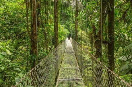 Costa Rica mit dem Mietwagen entdecken, San José, Tortuguero Nationalpark, Arenal, Monteverde, Rincon de la Vieja und Tamarindo, Costa Rica