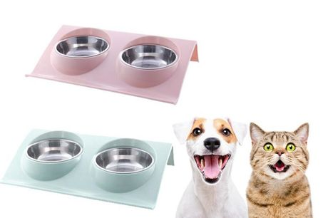 From £7.99 for a pet bowls from SecretStorz - save up to 60%