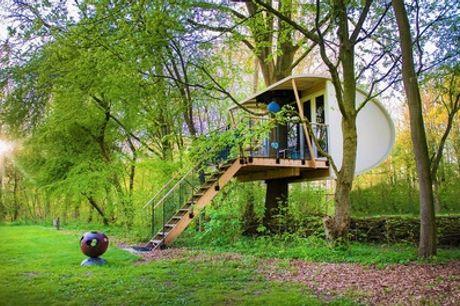 Hoog in de bomen: een overnachting in een boomhut inclusief schoonmaakkosten voor max. 4 personen