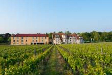 Wander- und Entdeckungsdeal in der Pfalz. Ihr 4-Sterne Hotel Prinzregent liegt, umgeben von Weinbergen, im Pfälzer Wald. Neben seiner idyllischen Lage überzeugt das Hotel ebenfalls mit seiner gemütlichen Einrichtung und dem kleinenWellnessbereich