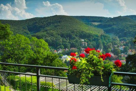 Flot All Inclusive-ferie i smukke Harzen - inkl. 3 nætter. Få en miniferie på 3 nætter på 3-stjernet hotel med All Inclusive og store naturoplevelser