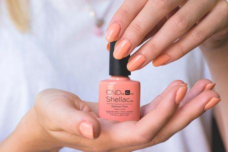 Manicure/pedicure med Shellac. Få smukke sommernegle hos dygtige Sabiqa i indre by