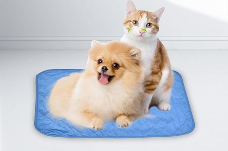 £8.99 for a foldable cooling mat for pets, £9.99 for a medium cooling mat, £10.99 for a large cooling mat - pet cooling mat