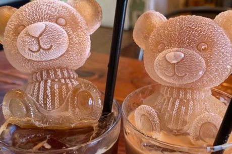 £6.99 for a 3D teddy bear silicone ice cube mould, 12.99 for two moulds - Magic Trend