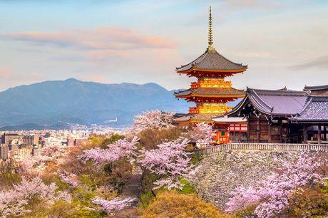 Giappone Tokyo - Tour gli splendori del Giappone a partire da € 897,00. Tour completo del paese del Sol Levante in treno