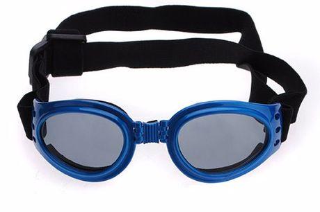 Zonnebril voor de hond Cool gadget voor fotosessies met hond en baasje. Ook nuttig als oogbescherming voor oude honden of honden met oogziektes. Met verstelbare bandjes.