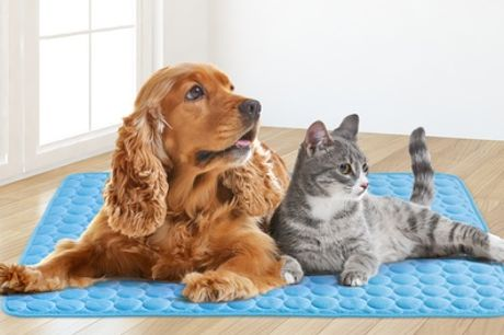 Gel Cooling Mat for Pets