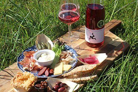 RØSNÆS - Vingårdsbesøg med tapasfrokost og vinsmagning hos Barfod Vin. Flere datoer i august.