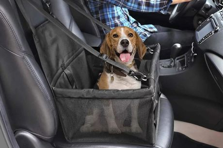 £15.99 for a pet car seat in blue, pink, black or grey from Buy Something!