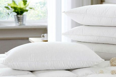 £14 instead of £49.99 for two goose down feather pillows or £24 for four pillows from Direct Warehouse Limited - save 72%