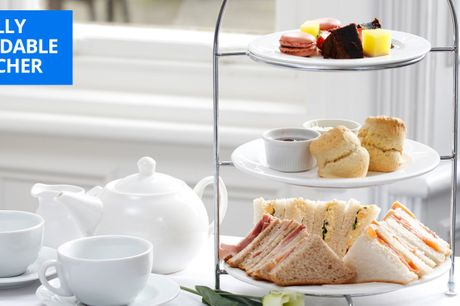 £13.95 -- York: afternoon tea for 2 with birds of prey entry