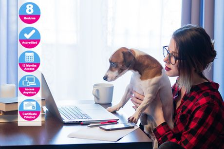 £9 instead of £99 for an accredited 'Market Your Own Pet Business' online course from Holly and Hugo - save 91%