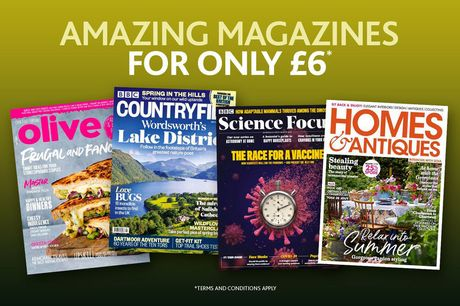 £6 for a choice of three-month magazine subscription from Immediate Media - get an issue every month from top magazines including BBC Good Food, Top Gear, Countryfile and Gardener's World!