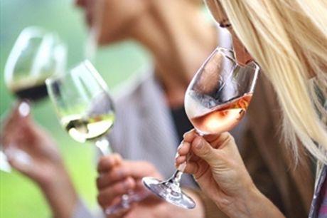 Curso Online de Enologia para 1 ou 2 Pessoas com a Sociedade Digital desde 23€. Para os Apreciadores de Vinho.