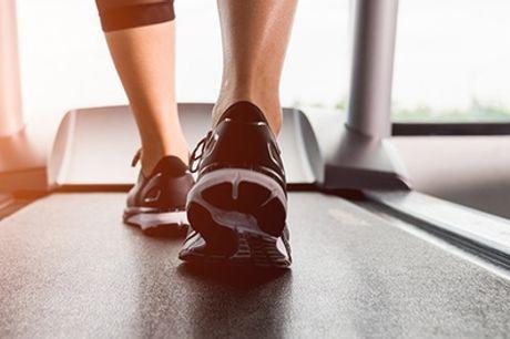 90 Minutes Postural Assessment at Cione Wellness Centre