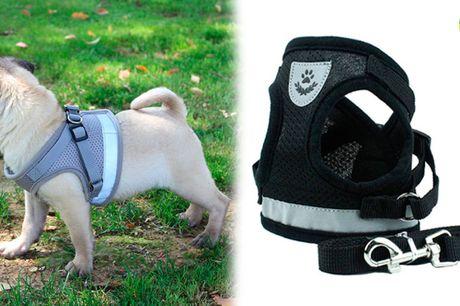 Ergonomisk vest-sele med refleks der giver sikkerhed og komfort til din hund