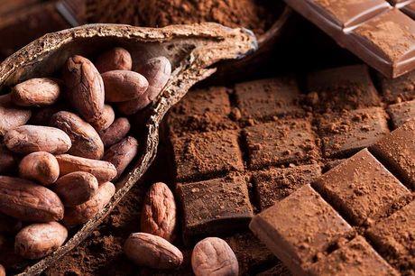 Chocoladeproeverij en rondleiding Ben jij gek op chocola? Kom dan naar hét walhalla voor chocoladeliefhebbers in Amsterdam: het Cacaomuseum. Proef bijzondere chocola en krijg een leuke rondleiding!
