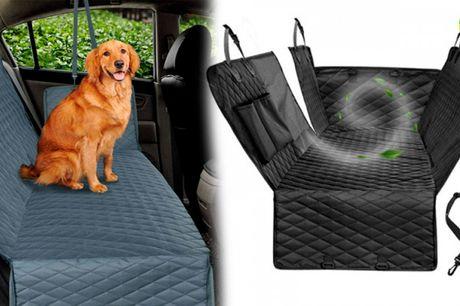 Beskyt din bil mod snavs, blade og hundehår med det smarte bilsædebetræk