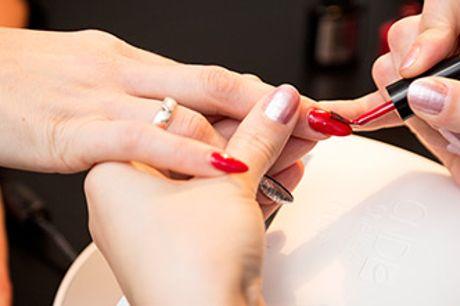 Klassisk manicure eller pedicure med Shellac i hjertet af København.