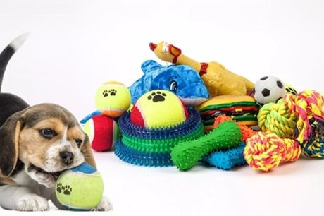 Mixed Mystery Pack of 10 Assorted Dog Toys