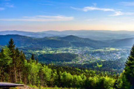 Erholung am Bayerischen Wald mit Wohlfühlfaktor. Das Hotel Ahornhof in Lindberg bietet seinen Gästen neben einer komfortablen Übernachtung auch einen großzügigen Wellness- und Spabereich mit finnischer Sauna, Kräutersauna, Solarium und Beauty Farm