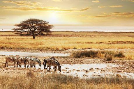 Sudafrica Sudafrica - Alla scoperta del Sudafrica a partire da € 1.142,00. Avventurosi safari ed escursioni con soggiorno in lodge