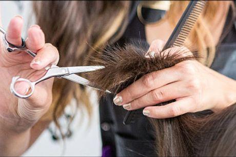 Super priser på frisørbehandlinger i Kbh K - Fashion in mind - Lækre frisørdeals med Dameklip, farvning, vask, hårkur og føn, vælg til kort hår, skulderlangt eller langt hår. Værdi op til kr. 899,-