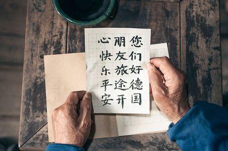 Online cursus Chinees Inclusief certificaat & begeleiding<br /> De taal van de toekomst<br /> 6 maanden na aankoop geldig