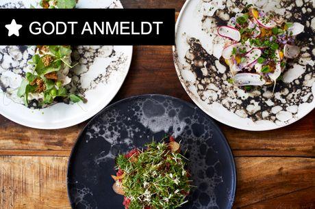 Kun i dag! Norrlyst: Tidl. kok fra Michelin-restaurant Kadeau byder på nordisk og bæredygtigt menukort.