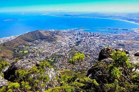 Von Südafrikas Westkap zum Ostkap mit dem PKW - Kostenfrei stornierbar (bis 30 Tage vor Abreise), Kapstadt, Stellenbosch, Oudtshoorn, Plettenberg Bay, St. Francis, Addo – Südafrika - save 13%