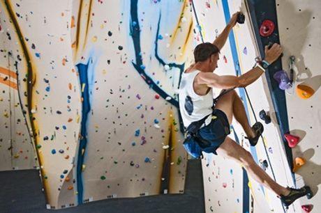 Huizen: klimmen in een indoor klimbos bij Coronel Events