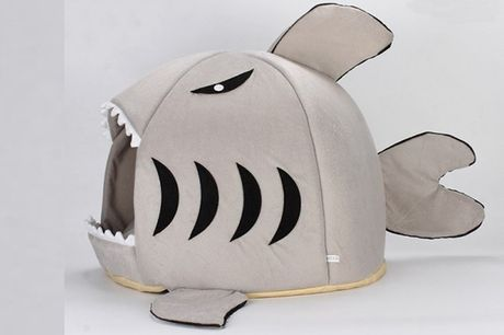 From £8.99 for a shark pet bed from Hey4Beauty - save up to 68%