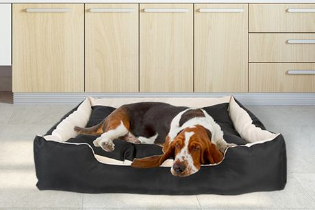 £34.99 for a 120cm x 90cm x 30cm dog bed!