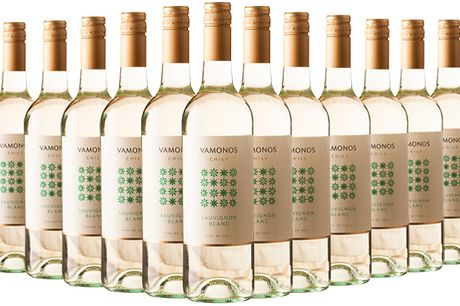 6 or 12 Bottles of Vamonos Sauvignon Blanc     It's a dry and aromatic white that's bursting with flavour     With notes of citrus and tropical fruit, it makes the perfect summer wine     Choose from 6 or 12 bottles - stock up ready for a summer BBQ or