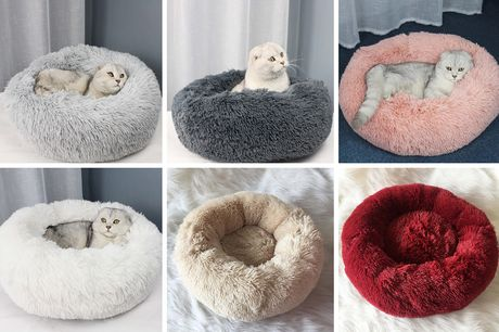 £16.99 instead of £39.98 for a 50cm pet bed, £19.99 for a 60cm pet bed, £24 for a 70cm pet bed in a choice of white, grey, dark grey, pink, beige and red - save up to 58%