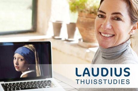 Online cursus Kunstgeschiedenis, naar keuze met hulpdocent en examen via Laudius