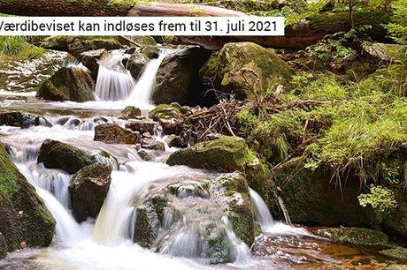 Oplev naturskønne Harzen på en miniferie med 3 nætter, All Inclusive alle dage og gratis parkering