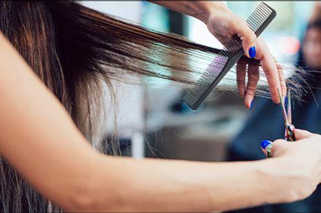 Lav dealpris på den helt store tur til frisøren! - Frisørbehandling til kort, mellemlangt eller langt hår - Økologisk helfarve eller 1 farve striber, vask, vitaminkur, dameklip samt føn. Værdi op til kr. 2500,-