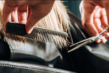 Lave priser på klip, reflekser og stolemassage.. - Lækkert hår og dejlig stolemassage. Du får en dameklip inkl. 1 farve reflekser og stolemassage. Vælg kort, skulderlangt eller langt hår. Værdi op til kr. 1300,-