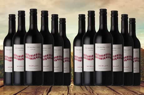 £29 instead of £46.5 for Six cases of Primera Luz Chilean red, £52.99 for 12 cases from The Great Wine Co. - save up to 38%