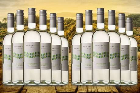 £29.99 instead of £46.50 for six bottles of Primera Luz Chilean white wine or £52.99 for 12 bottles from The Great Wine Co. - save up to 36%