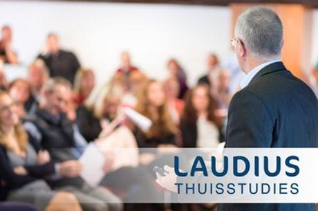 Online cursus Management Consultant, naar keuze met hulpdocent en examen via Laudius