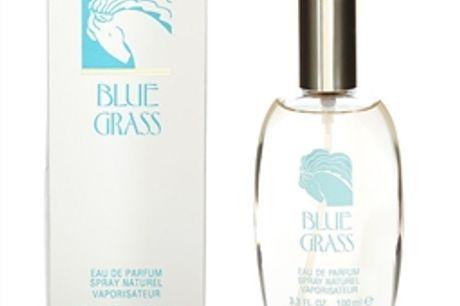 ELIZABETH ARDEN BLUE GRASS ARDEN EAU DE PARFUM 100ML VAPORIZADOR por 22,34€ PORTES INCLUÍDOS