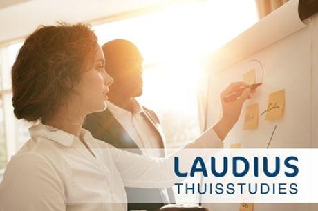 Online cursus Marketing- en reclamepsychologie, naar keuze met hulpdocent en examen via Laudius
