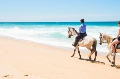 Visite o Alentejo e Passeie a Cavalo: 1, 2 ou 3 Noites no Hotel Rural Monte da Lezíria com Pequeno-Almoço e Opção de Passeio a Cavalo..