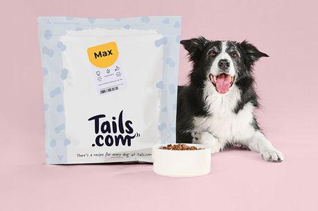 1 maand hondenvoer Precies afgestemd op jouw hond  Gemaakt met natuurlijke ingrediënten  Eenvoudig en op elk moment opzegbaar