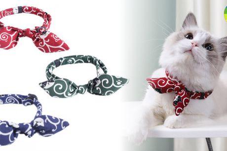 Kattehalsbånd med fin sløjfe i blødt materiale