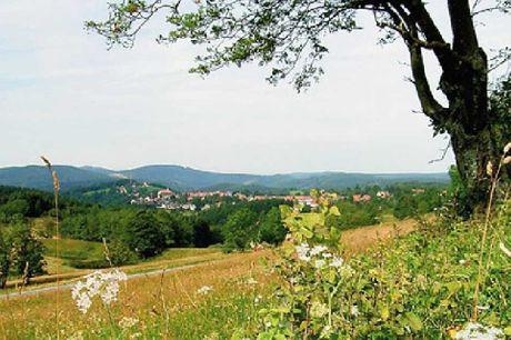Kulturelle oplevelser i populære Harzen med udsigt til det smukke landskab. 3 dage inkl. - 2 overnatninger m. morgenmad - 1 x 2-retters menu/buffet - 1 x velkomstdrink - 1 x drink/cocktail billet til baren - Adgang til sauna